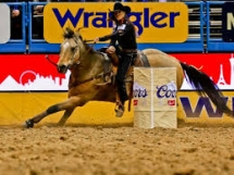 National Finals Rodeo Packages